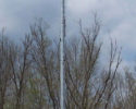 60-ft-cdmi-ballasted-monopole-tower-1