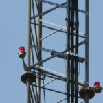 Used-Tower-Lighting-Kit-2